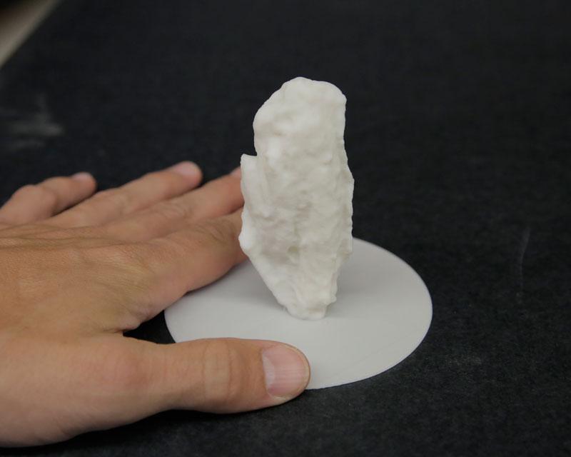 BWW-3D-Printed-Chicken-Wings-02.jpg