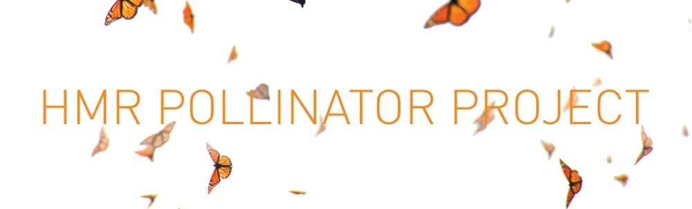 HMR-pollinator-project