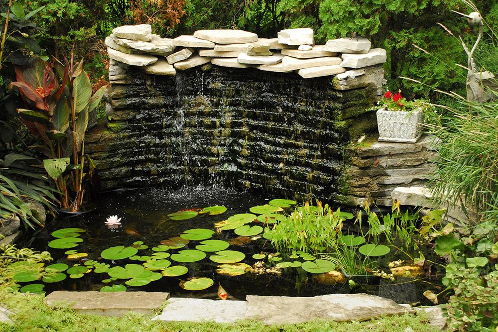 Brockamour Pond