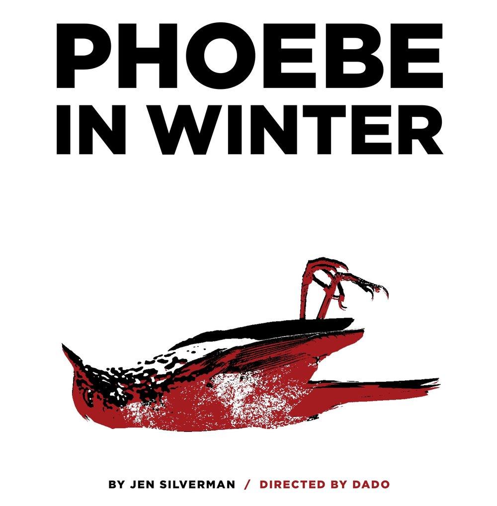 phoebe_in_winter_home.jpg