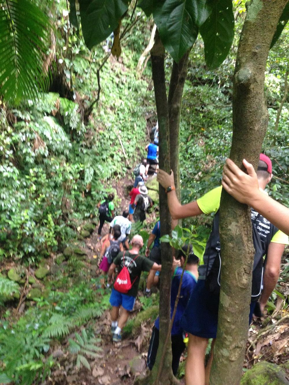 Up Trail1.jpg