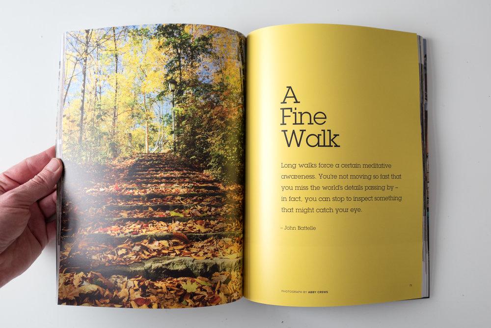first-edition-1160449.jpg