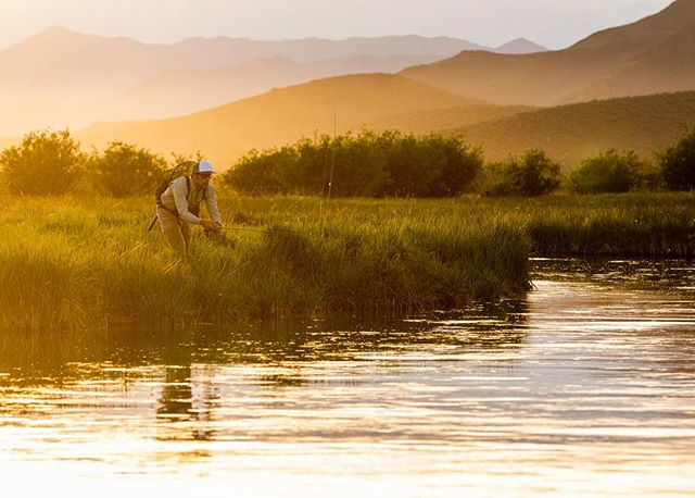 On the hunt for big ol' brown trout on Idaho's famous #SilverCreek || 📷 - @wyattncaldwell