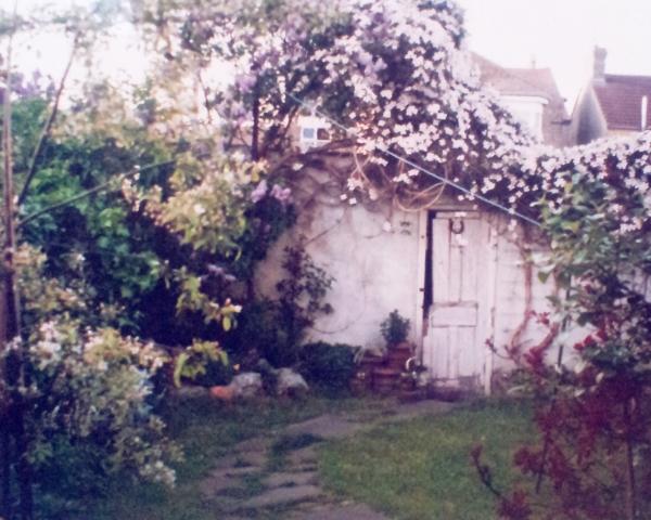 My own Secret Garden in an Essex suburban street.