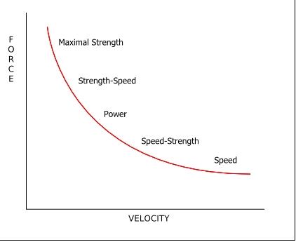 Force-Velocity curve