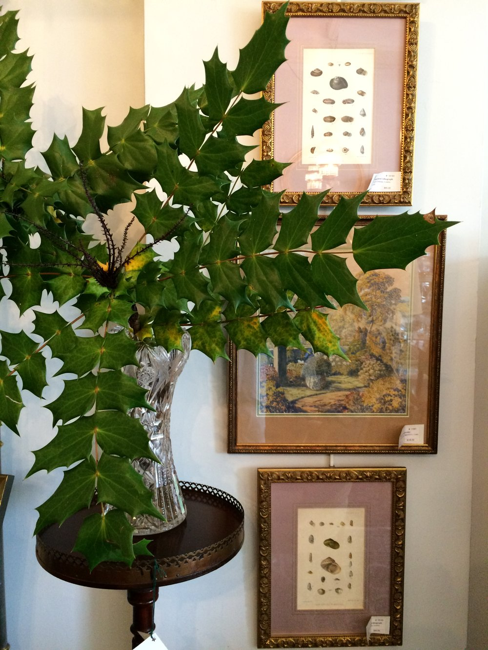Plant Stand with Mahonia and shell  engravings.JPG