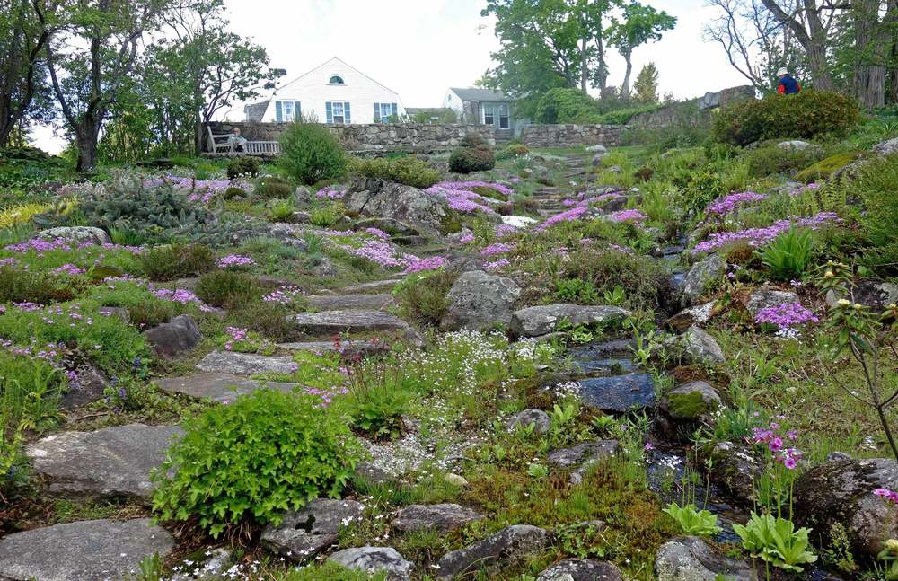 The-Fells-spring-rock-garden.jpg