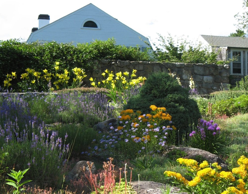 The summer Rock Garden in full bloom.