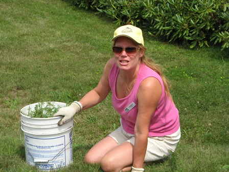 Volunteer Weeding-r.JPG