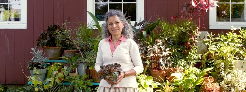Gardening As If The World Depends On Us A Lecture By Tovah