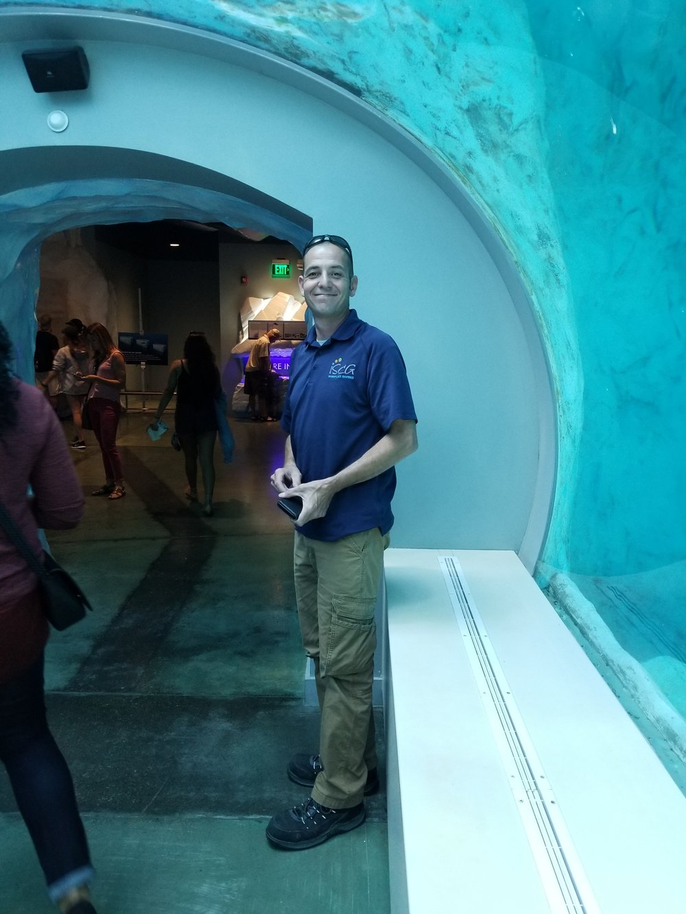 Project Manager Bill enjoying the Penguin exhibit.
