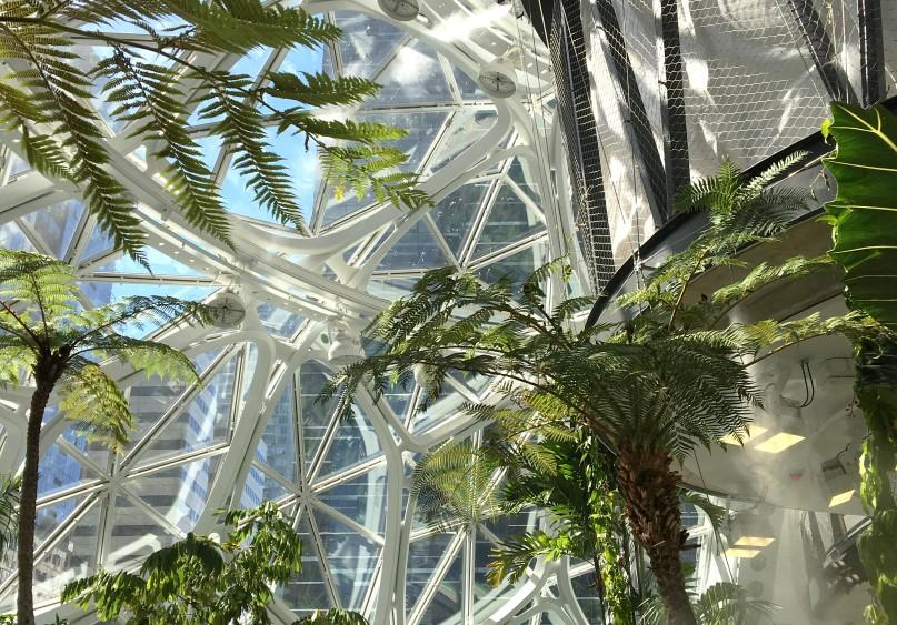 The Seattle Spheres aka Amazon HQ.