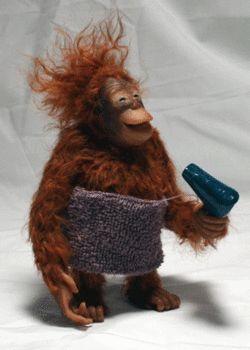 Monkey-Hairdryer.jpg