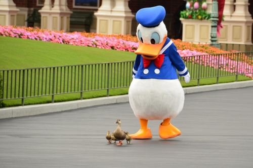 DonaldDuck.jpg