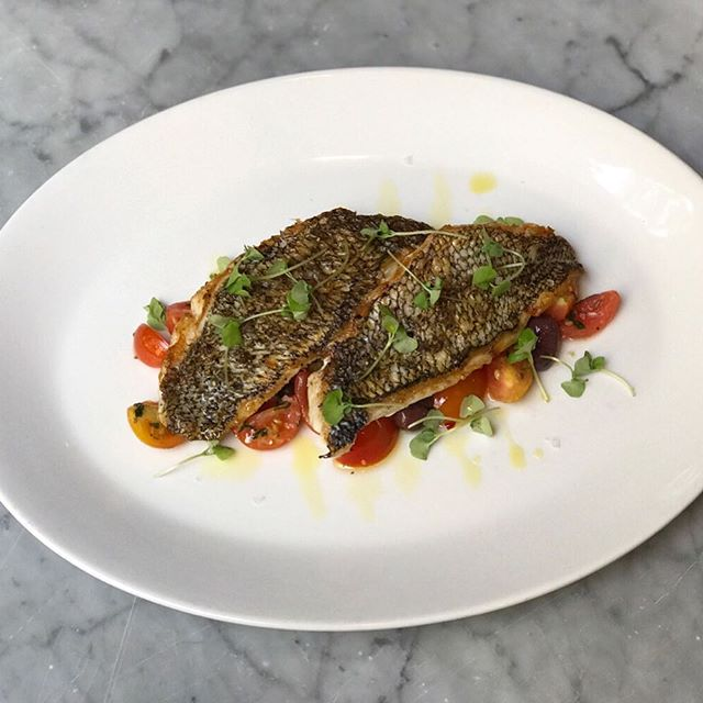 Wild local black sea bass, tomato, oregano, caper, & olive. #sundayfunday #onlyatrosso
