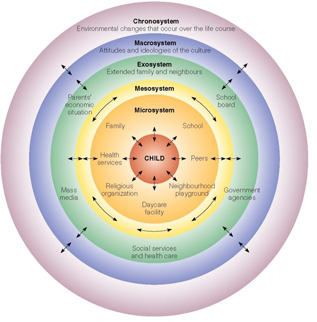 the effects of bronfenbrenner's ecological theory