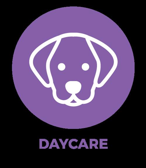 Dog Daycare Austin, TX