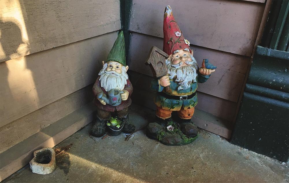 gnomes home.jpg