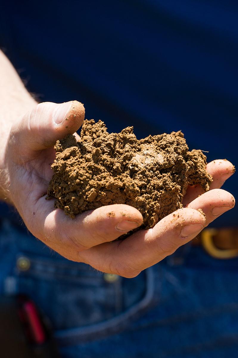 dirt-0038-1.jpg