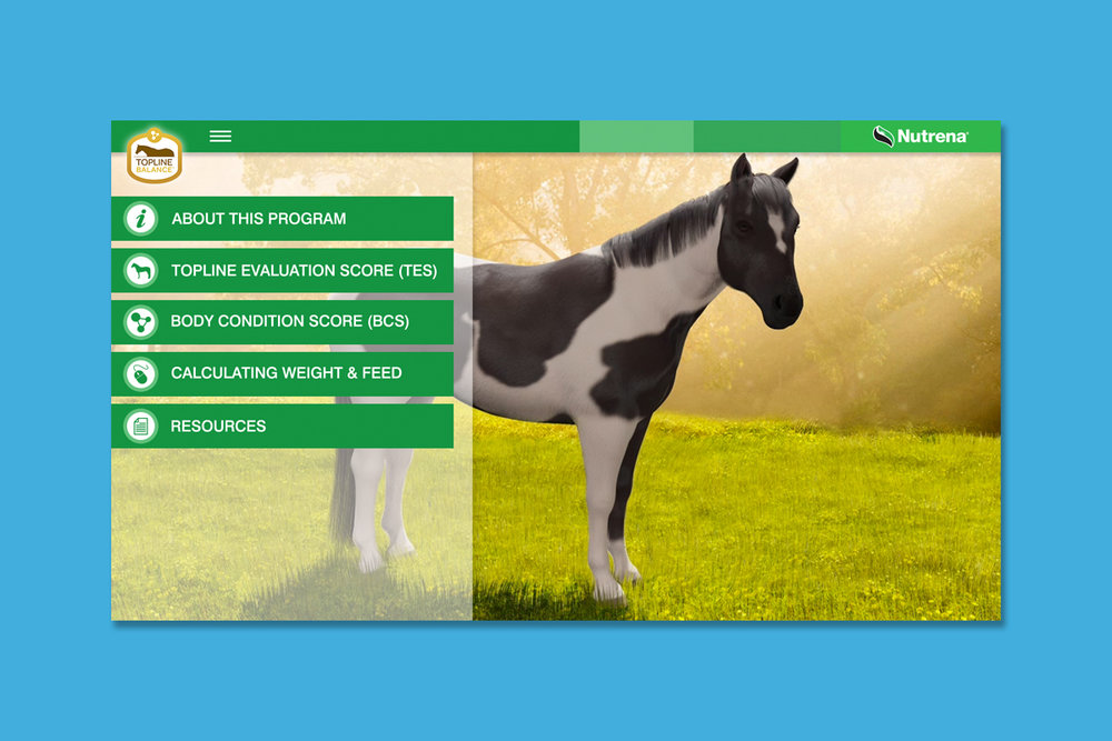 Client : Nutrena® Horse Feed  Project : Touchscreen animated training presentation  Details :  Home Screen