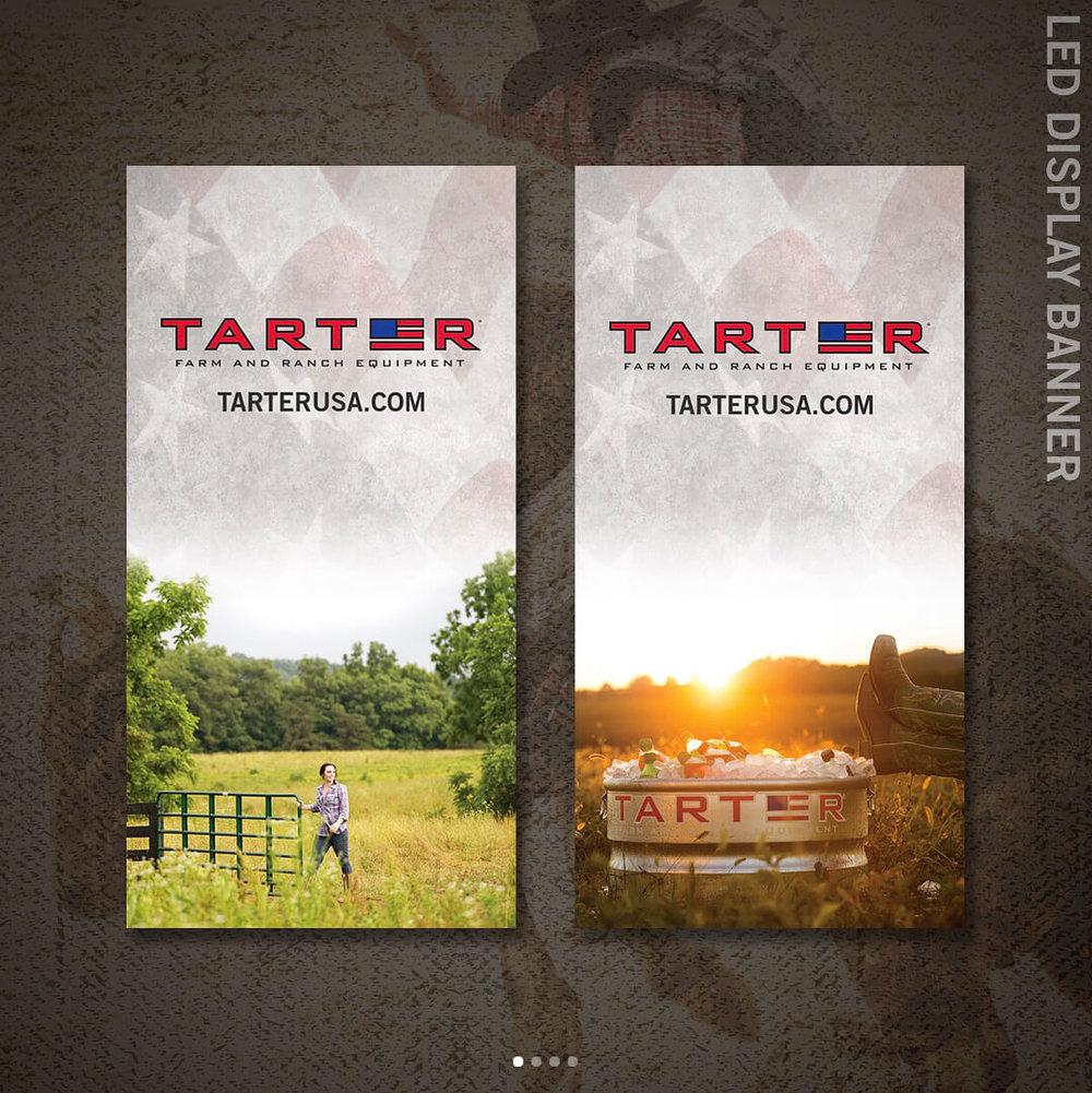 tarter-4.jpg