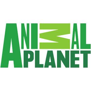 animal-planet-logo.jpg