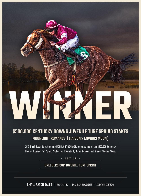 Sbs-Winner.jpg