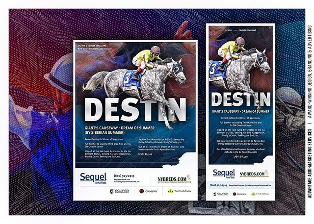 Recent work: National #print series for Sequel New York, showcasing premier stallions DESTIN (with @gainesway, @eclipsetbp & Twin Creeks Racing), THE LIEUTENANT and LAOBAN. 🐎