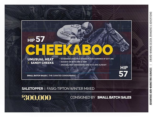 Earlier this month, in partnership with @smallbatchsales, we sold Hip 57 #CHEEKABOO (Unusual Heat - Sandy Cheeks), the sale topper of the @fasigtipton Winter Mixed Sale! Congratulations to Ciaglia Racing, J R Japan and all other connections. We're excited for her successful transition from race filly to broodmare!🐴