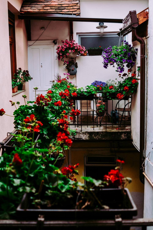 Brasov Home