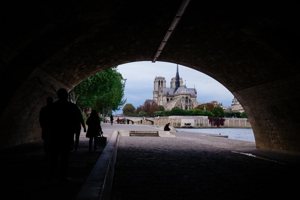 Catanzariti Notre Dame