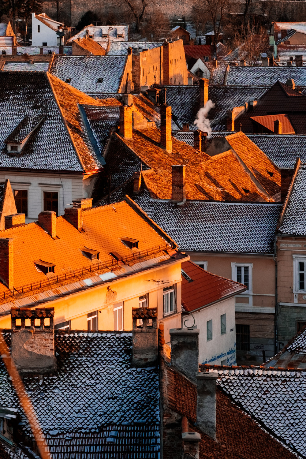 Wintry Rooftops