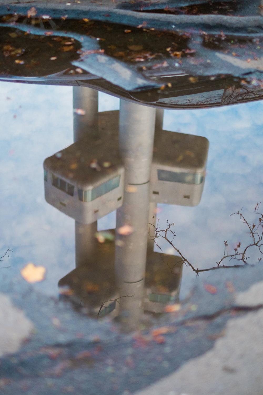 zizkov tv tower prague puddle reflection