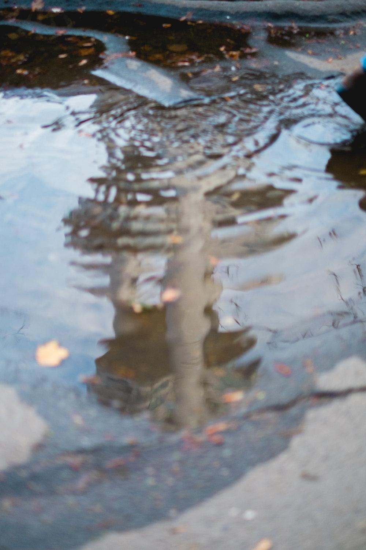 zizkov TV tower puddle reflection street photography prague