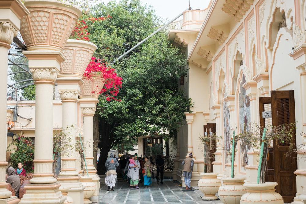 Vrindavan India Travel Street Photography (3 of 27).jpg