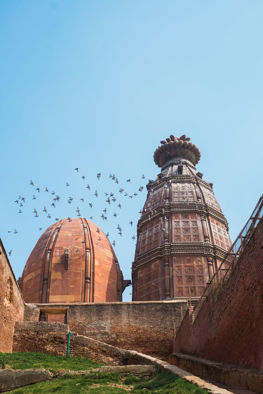 Vrindavan India Travel Street Photography (12 of 27).jpg