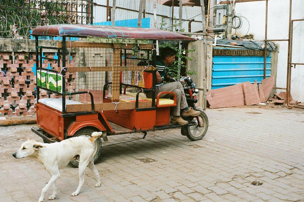Vrindavan India Travel Street Photography (21 of 27).jpg