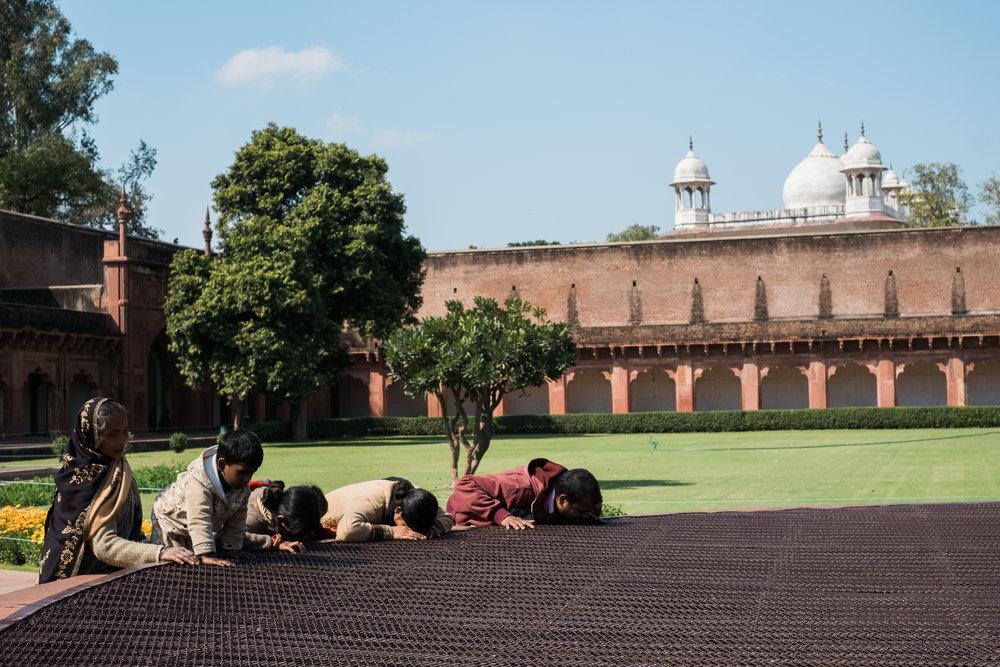 Agra India Travel Street Photography (29 of 39).jpg