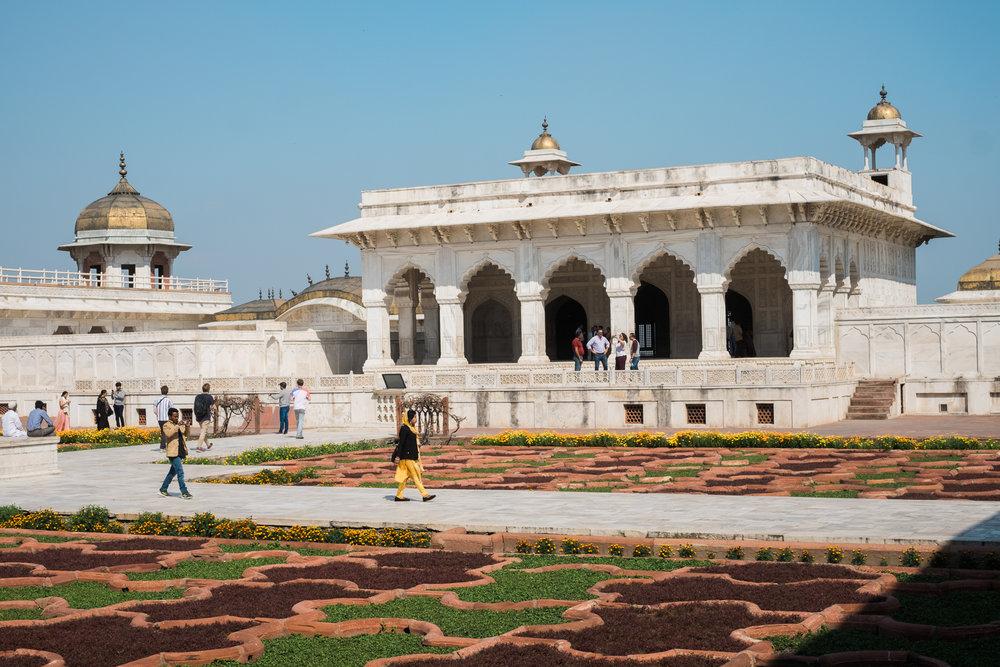 Agra India Travel Street Photography (33 of 39).jpg