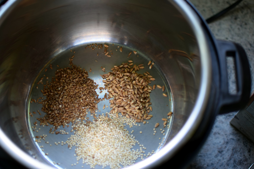 Farro, Quinoa, and Bulgur quick