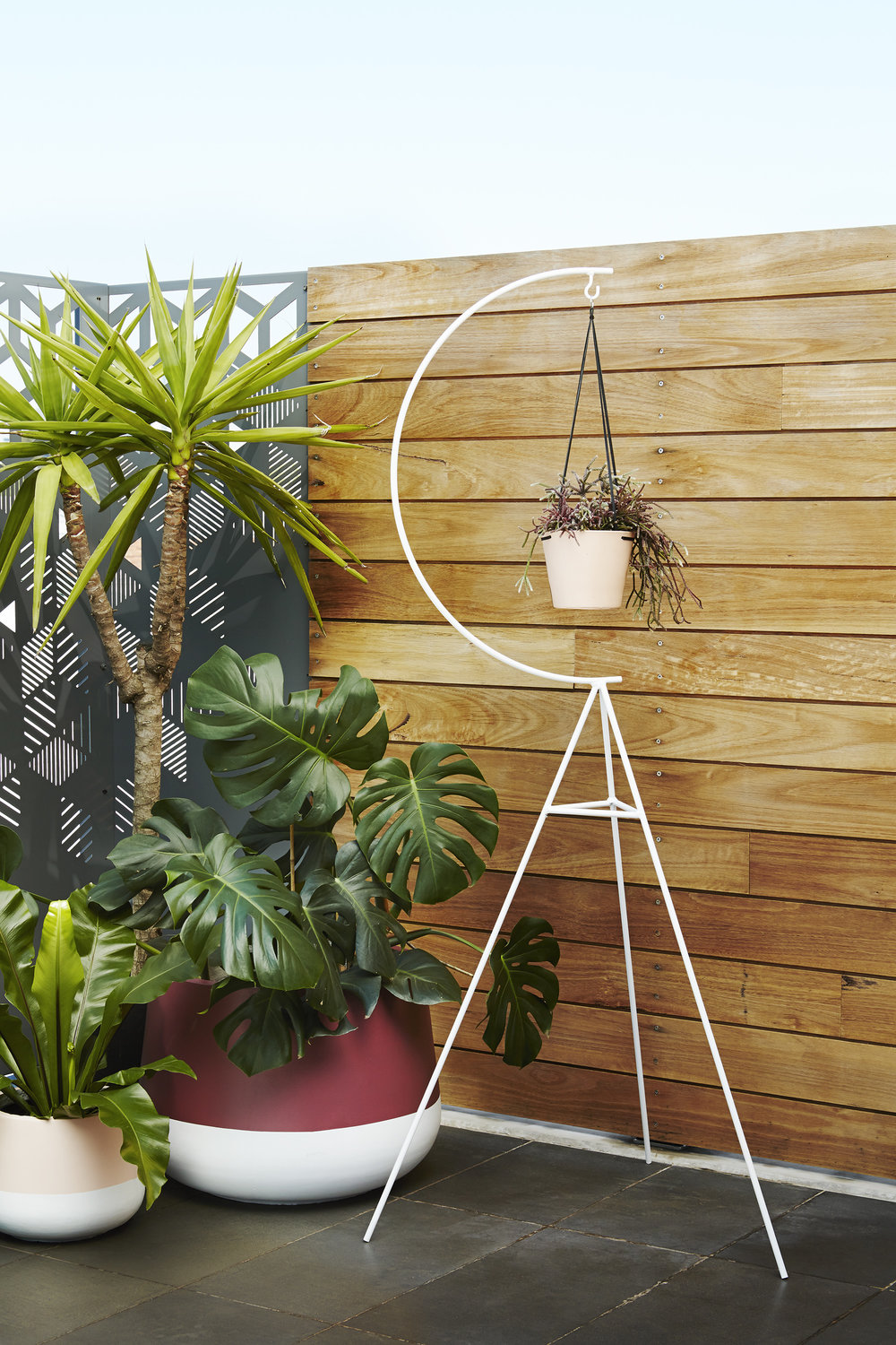 """We have numerous potted plants inside and out to extend a garden-like feel in our dense urban landscape,"" explains Nicola. Luum 'Cup' pots and Capra Designs 'Crescent' plant stand pictured."