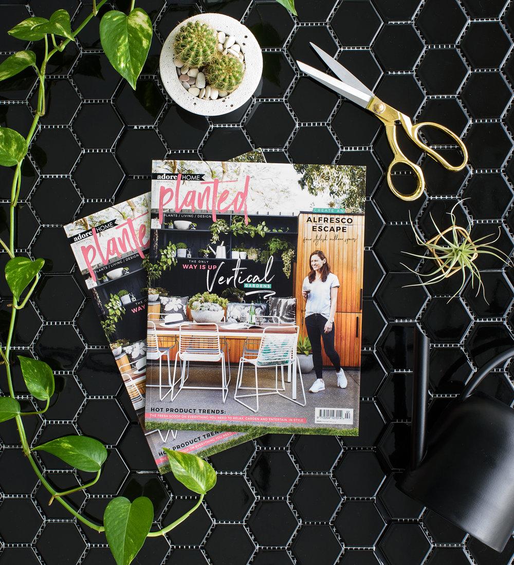 blog-planted_magazine_MAZ_3194.jpg