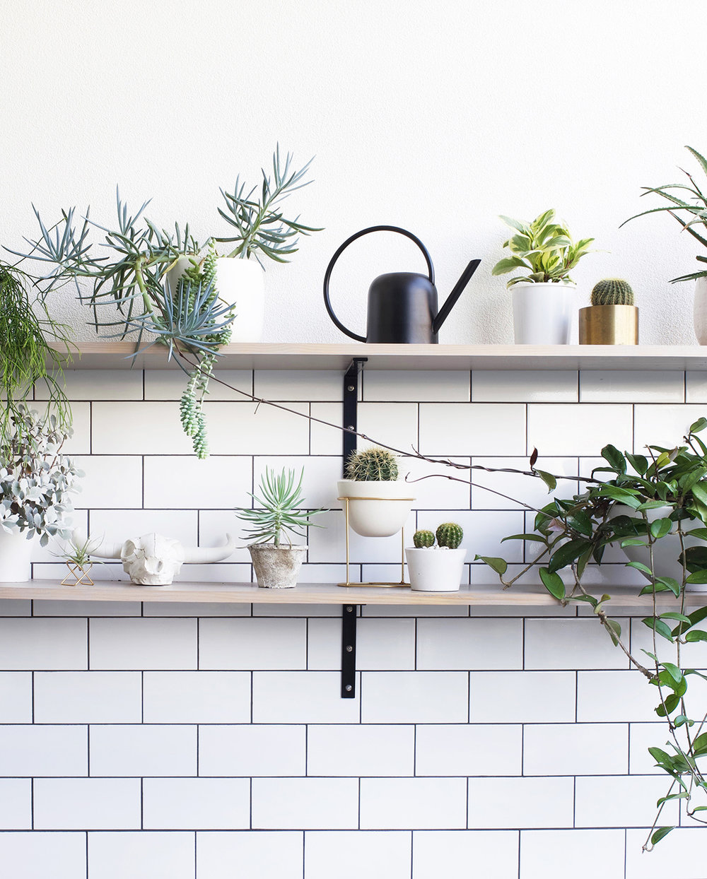 Adore editor Loni Parker's courtyard shelves