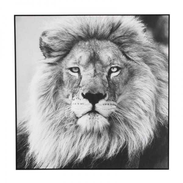 bl0116381-black-lion-canvas-120x120-web.jpg