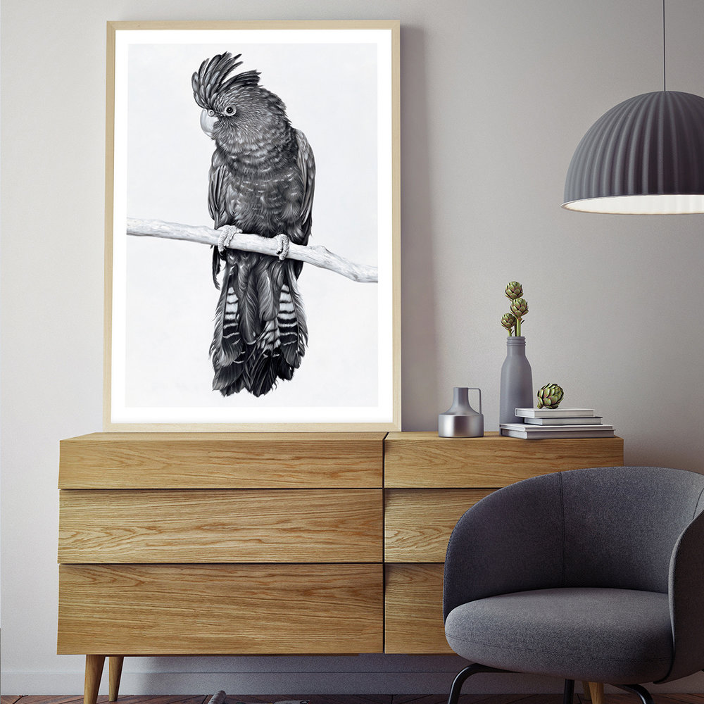 the_print_emporium_Black Cockatoo Art Print__.jpg