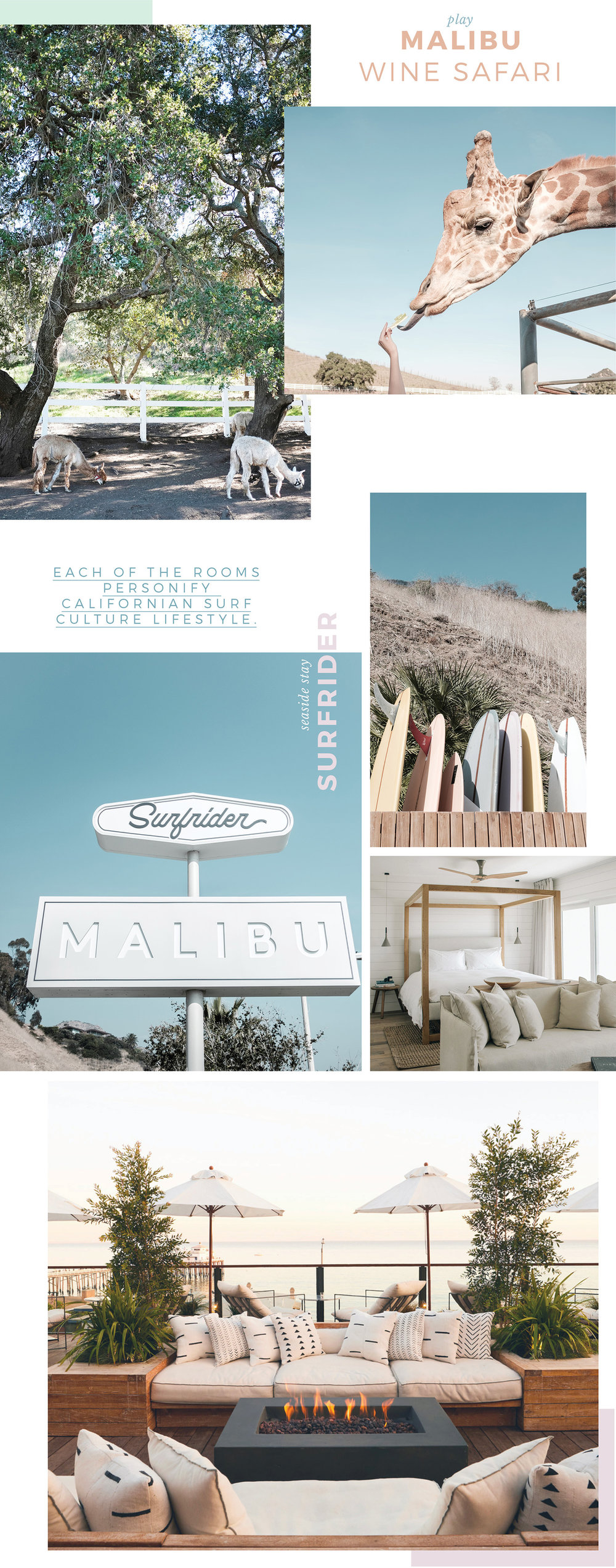 adore_blog_malibu_wine_SAFARI_animals_surfrider_hotel_beach_culture_LA_guide_holiday.jpg