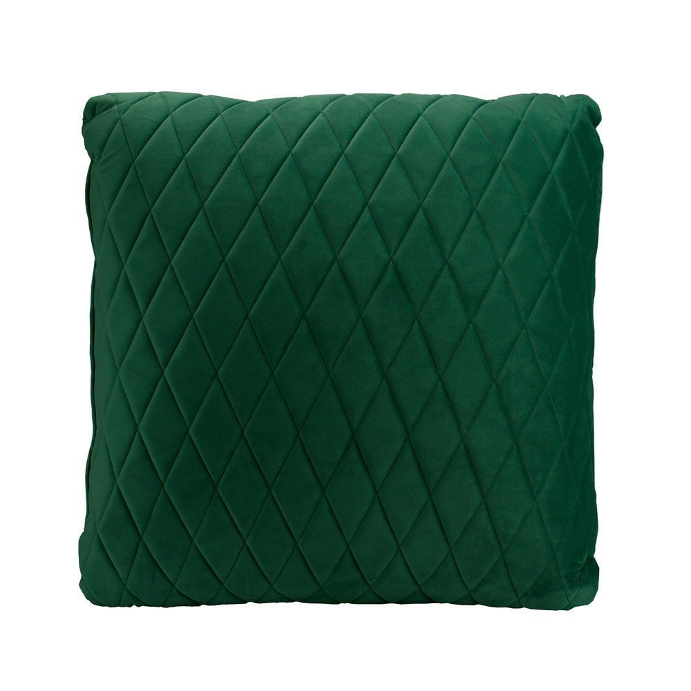IVY_GREEN_Velvet_Coco_Cushion.jpg