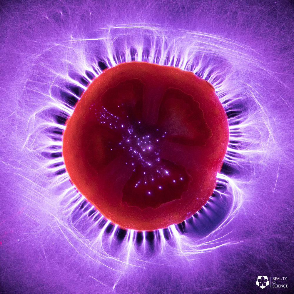 Kirlian Photography with Tomato