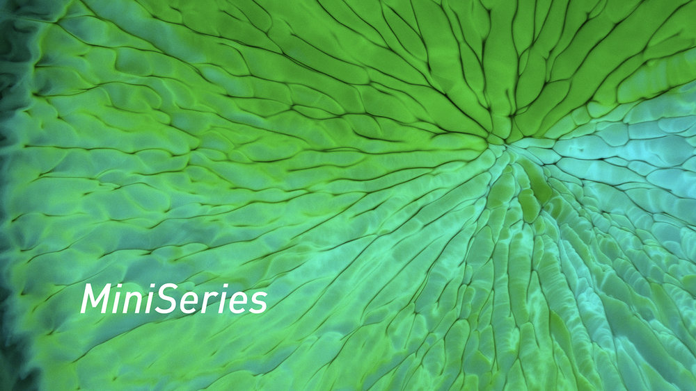 MiniSeries is a video series about making visual art via microscope photography.