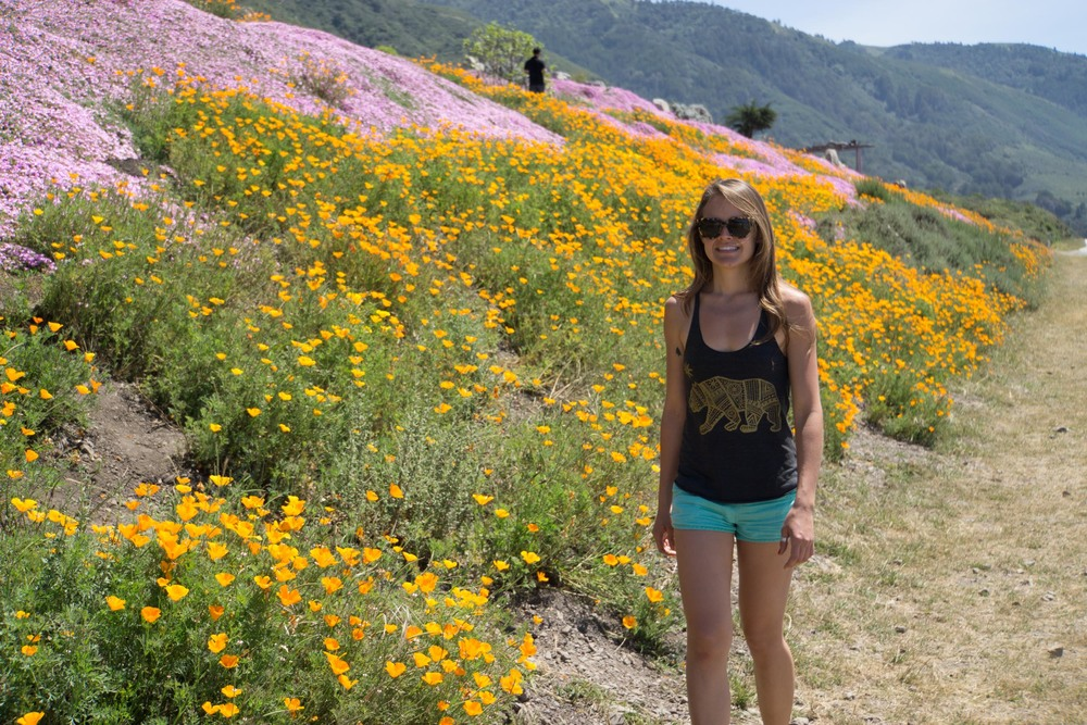 Sarah has an unhealthy obsession with poppies.